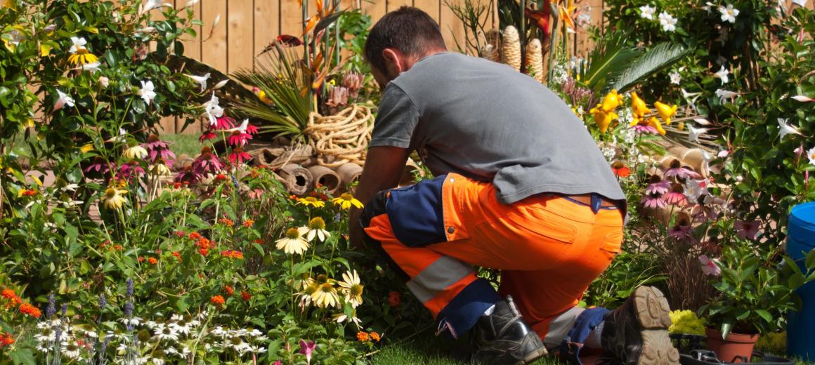 Groendiensten en tuinaannemers